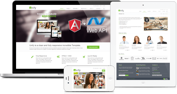 angularjs and asp net developers image